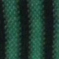 rayas negras verdes
