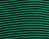 rayasverdeneg