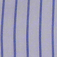 rayasazulblco