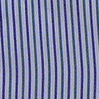 rayverdazul